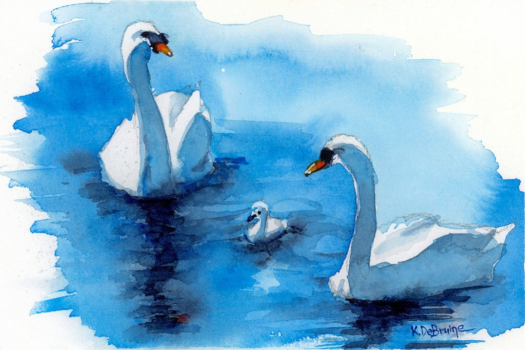 Swans Three studio watercolor painting by Kris DeBruine