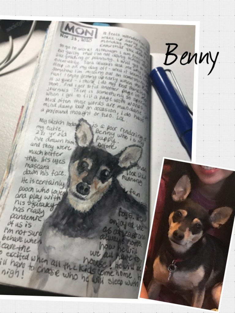 """Not a. Wet good rendering of my """"puppy"""" but it's always fun to sketch my Benny… Processe"""