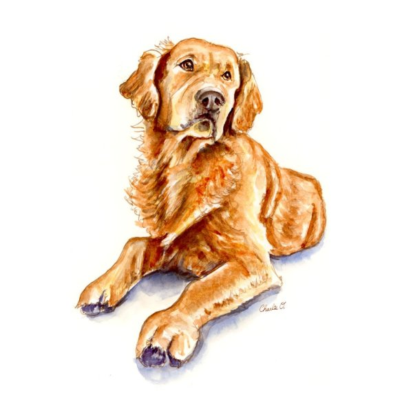 Golden-Retriever-Watercolor-Illustration_Signed_printfile_default Watercolor Print Detail