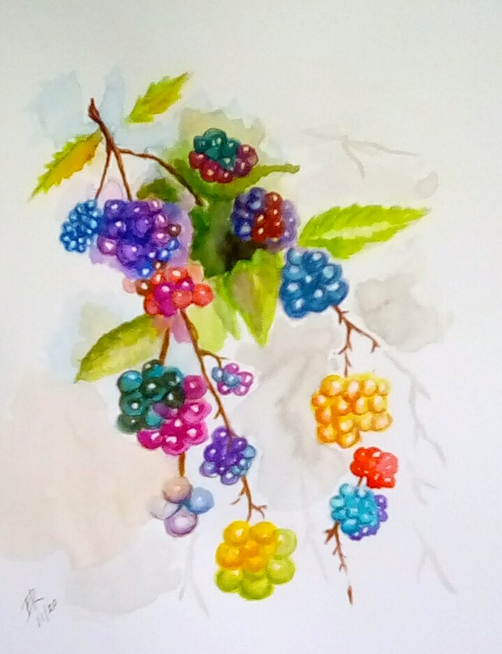 """Today's watercolor challenge """"Berries"""". My favorite are raspberry but you have to"""