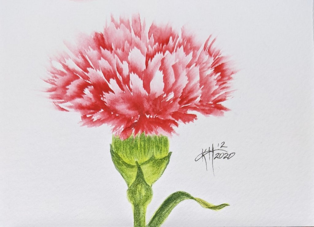Just messing around. I figured out a method to paint a carnation a while back but only painted 2 of