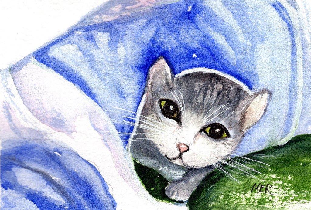 1/11/21 Kitten 1.11.21 Kitten img002