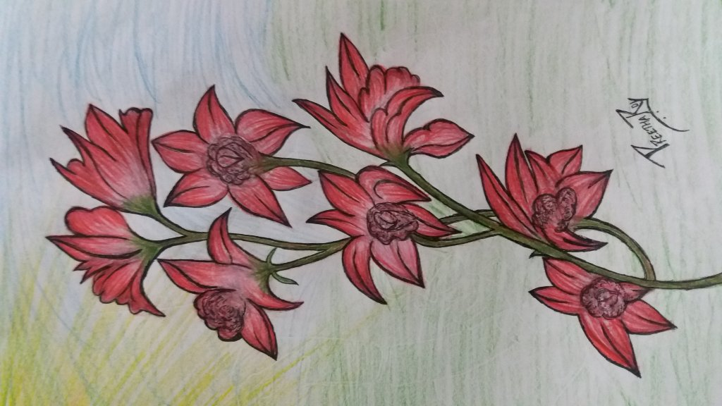 #doodlewashJanuary2021 #newyear#pencilcolours#beautifulflowers …. 20210105_210217