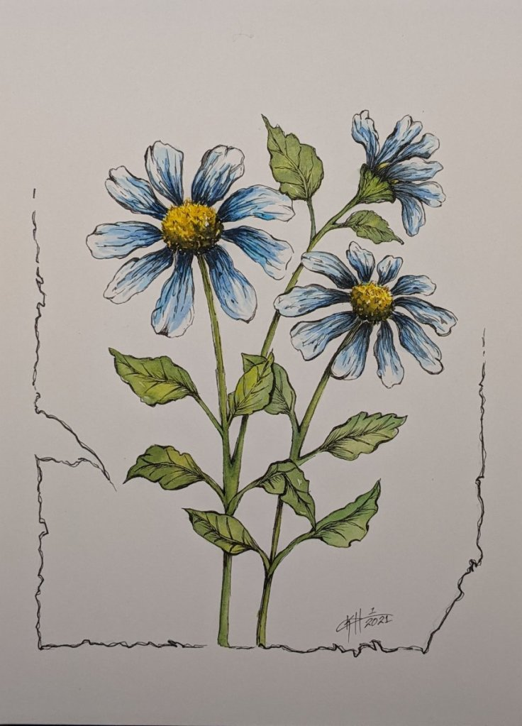 Inspired partly by Peter Sheeler #mijellomissiongold #blueflower #fluid100 #watercolorart #watercolo