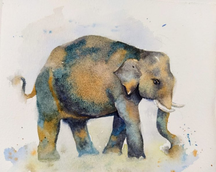 Elephant Watercolor Painting by Ashwini Rudrakshi
