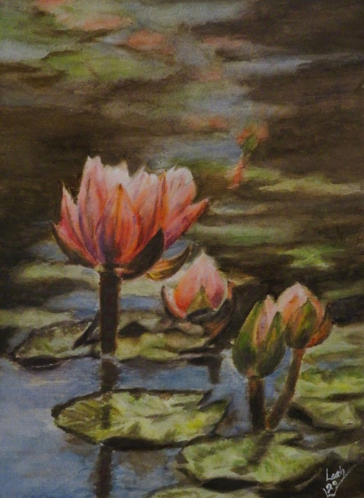 Ye Olde Waterlily Pond – everyone has to have a painting of one, right? IMG_2268