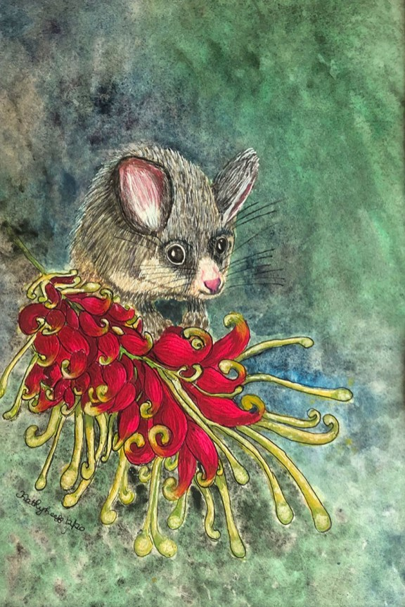POSSUM ON A BLOSSOM Watercolor by Kathy Lee