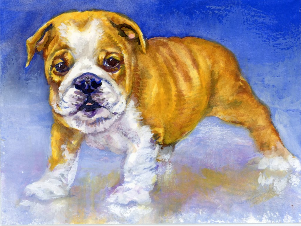 #DoodlewashJanuary2021 Prompt: Puppy. Did you know that in 2015, Otto the Bulldog set the Guinness W