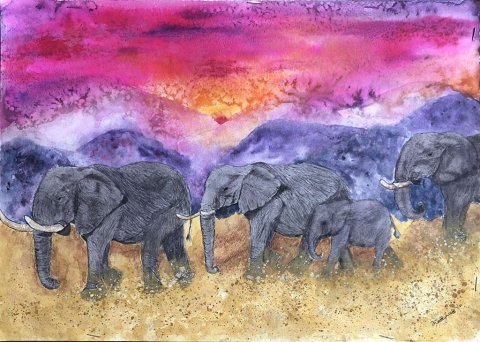 TRIBAL INSTINCT Elephants Safari Pink Sky Watercolor by Kathy Lee