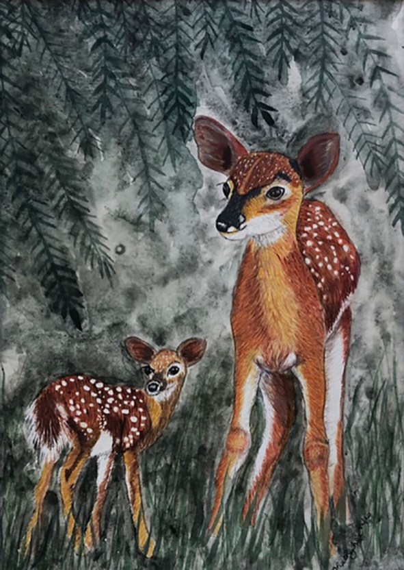 WOODLAND WILDLIFE Deer And Baby Deer Watercolor by Kathy Lee