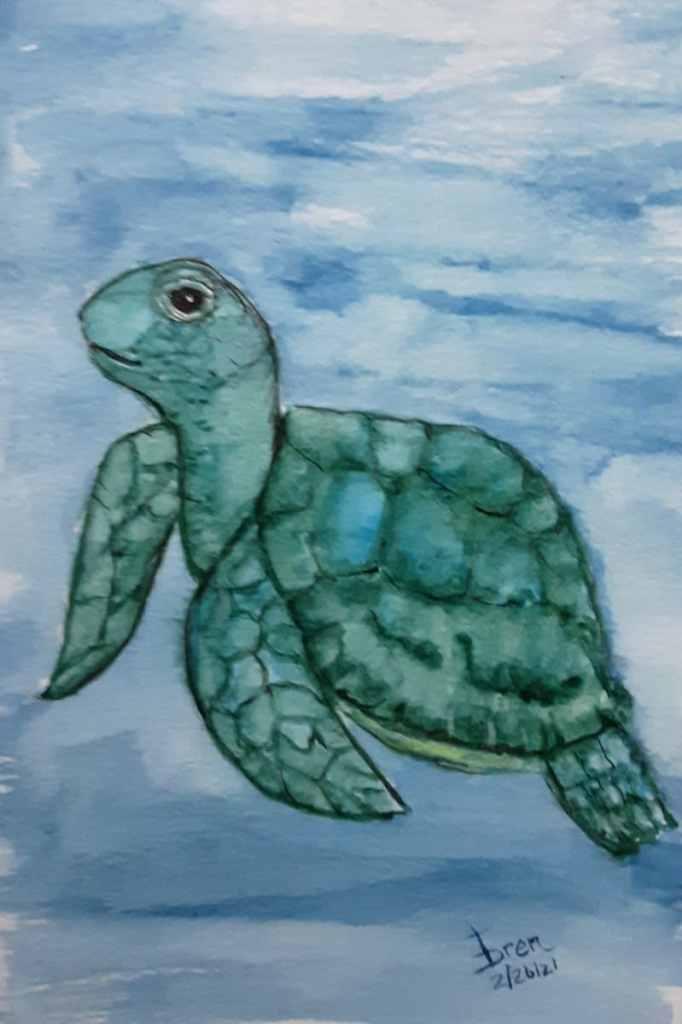 Here\'s my REPTILE sea turtle 20210224_195426