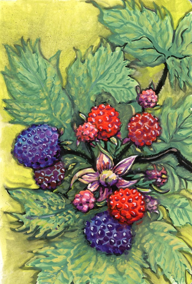 Berries gouache watercolor painting by Sandra Strait