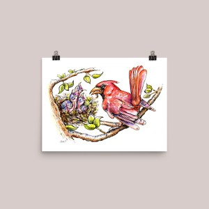 Baby Birds Cardinal Father Feeding Watercolor Illustration Signed Main