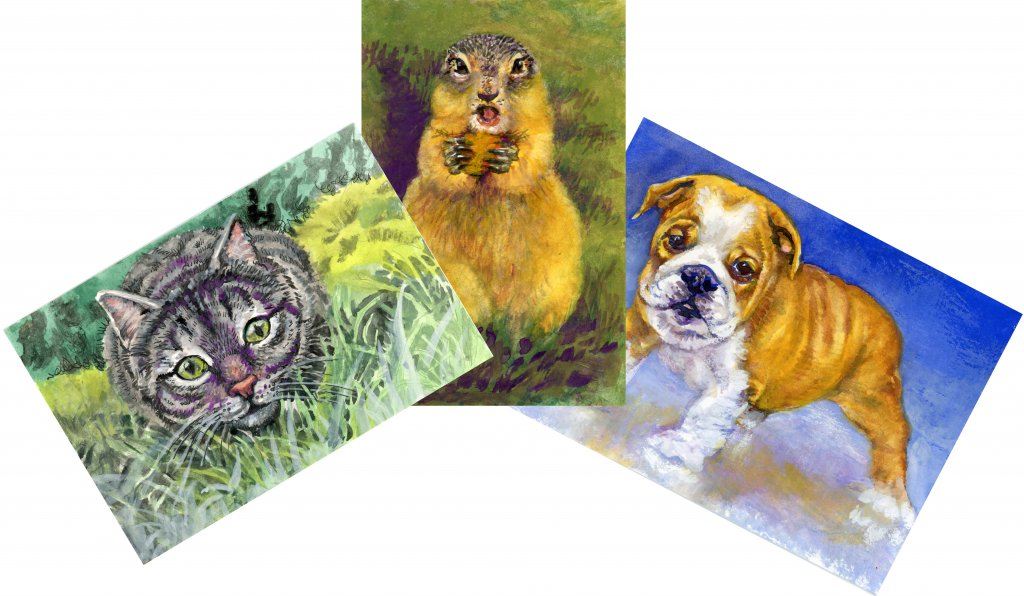 Watercolor Paintings of animals by Sandra Strait