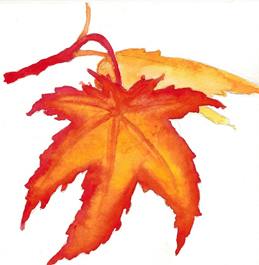 "Color blending with warm colors, also from ""101 Watercolor Techniques"" art101-004-leaf20"