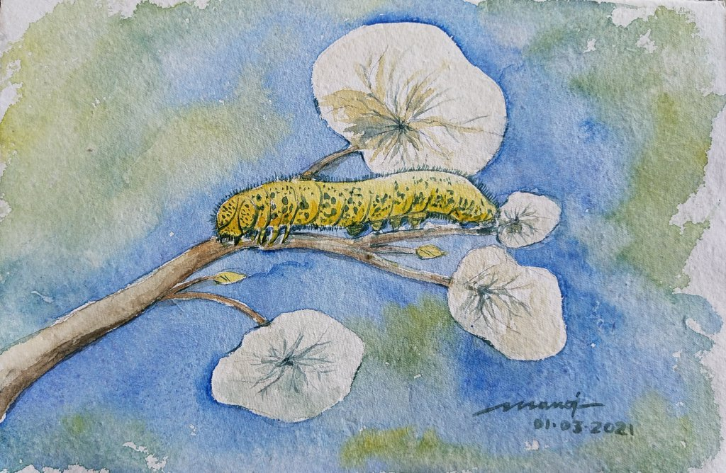 Dt: 01.03.2021 Sub: CATERPILLAR Watercolor painting on handmade paper inbound7907316734045572271