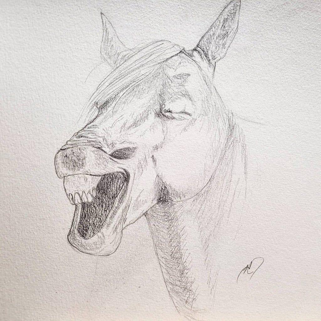 blue andalusiongerald giraffelaughing horseyellow horse rawbig reddandeeIMG_20210127_152826_684IMG_2