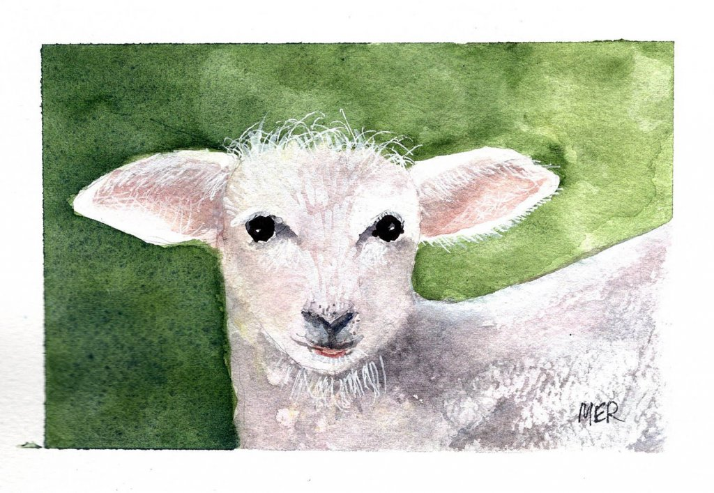 3/4/21 Lamb I used a Pixabay image as a reference. 3.4.21 Lamb img001