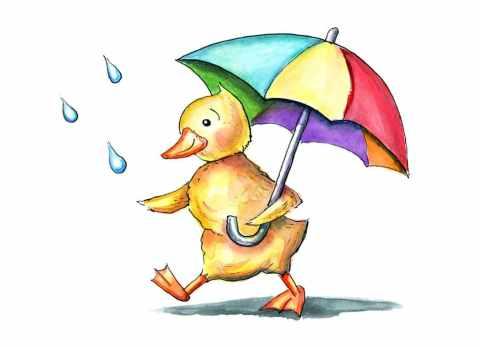 Duck Duckling Holding Rainbow Umbrella In The Rain Watercolor Illustration
