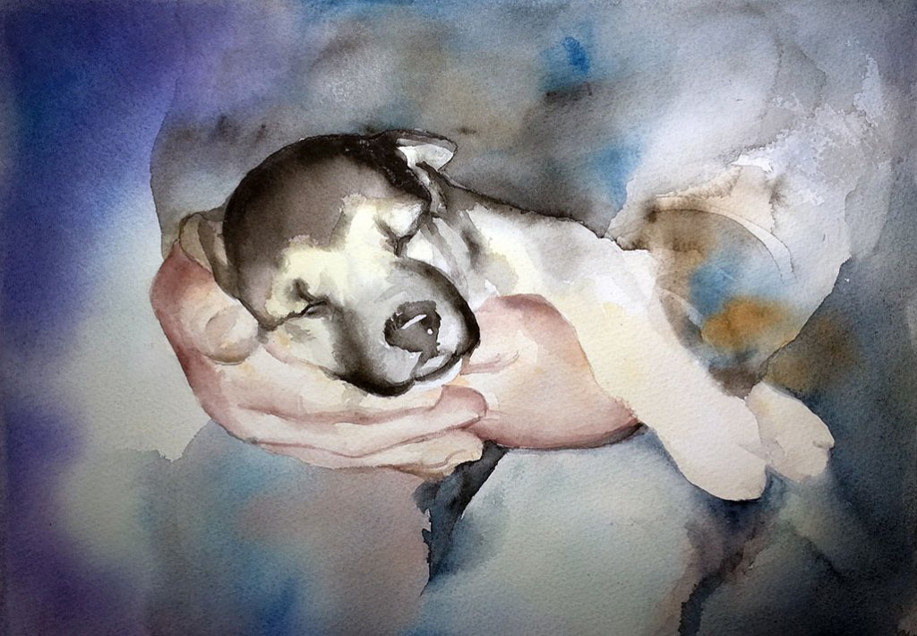 Forever Home - Puppy Watercolour