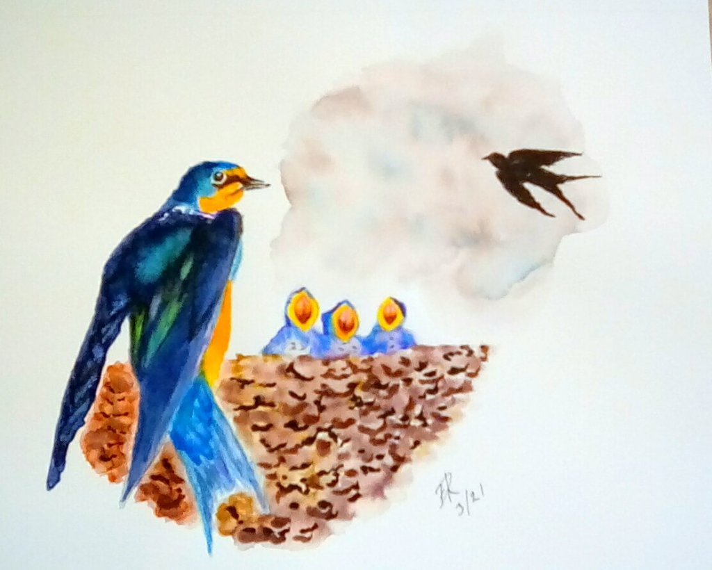 """Today's watercolor #Doodlewash challenge """"Swallow"""" . We have a mating pair of swal"""