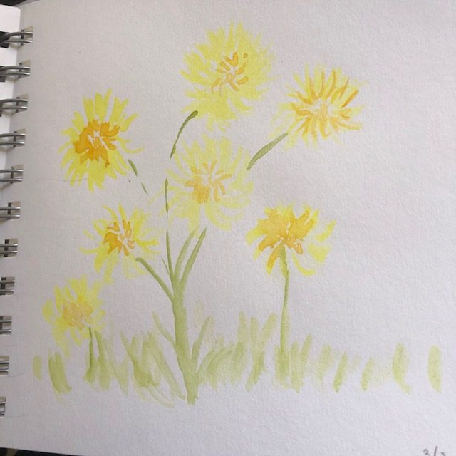 #doodlewashMarch2021 days 1 and 2 🙂 IMG_6513IMG_6514
