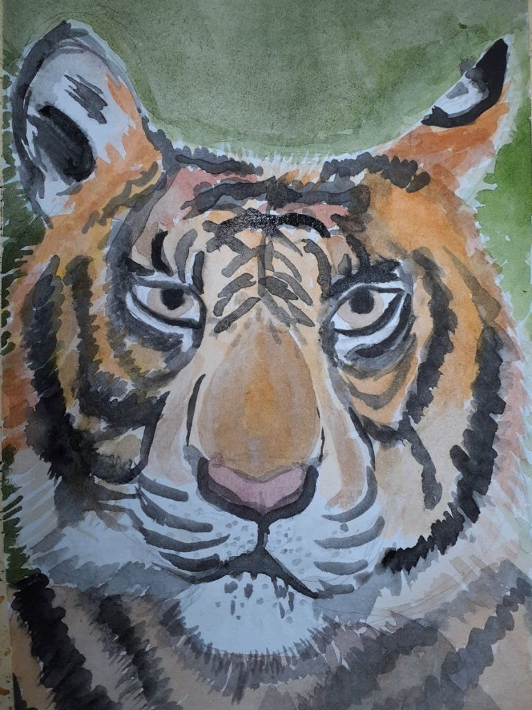 Tiger for yesterday. 20210410_174529