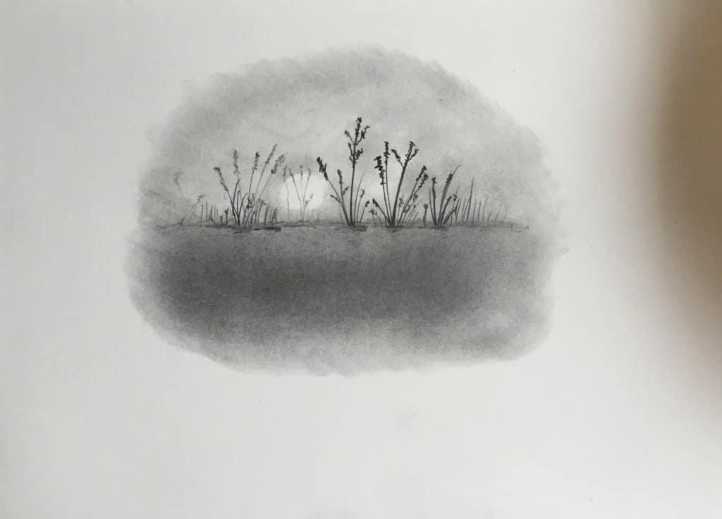 Graphite pencil and Graphite powder drawing 36E555DB-DEAC-4E32-A995-DD15BB295918