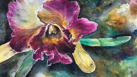 Lauren Arno Watercolor Painting Flower