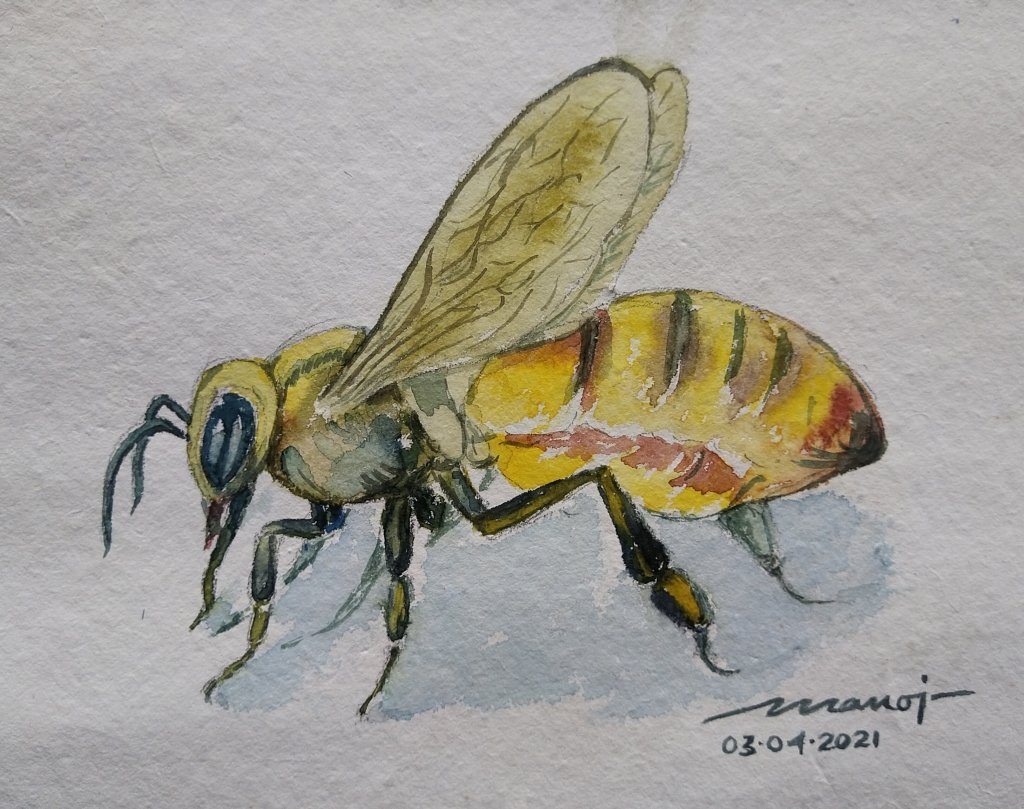 Dt. 03.04.2021 Sub: BEES Watercolor painting on handmade paper inbound424440656770839837
