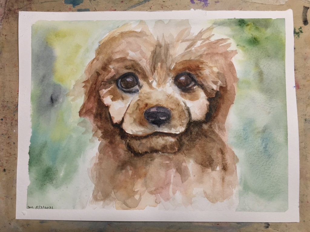 """Day 3 prompt, """" Puppy"""" 9×12"""" watercolour inspired by Maria Raczynska's tutorial #doodle"""