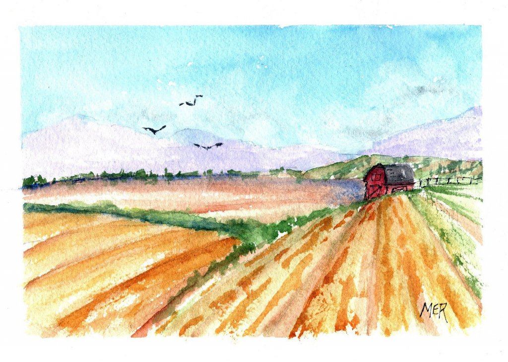 5/17/21 Farm 5.17.21 Farm img001