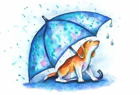 Dog Under Umbrella Rain Beagle Puppy Watercolor Illustration