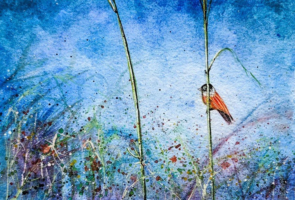 Robin Bird Watercolor Painting By Tanu Gupta