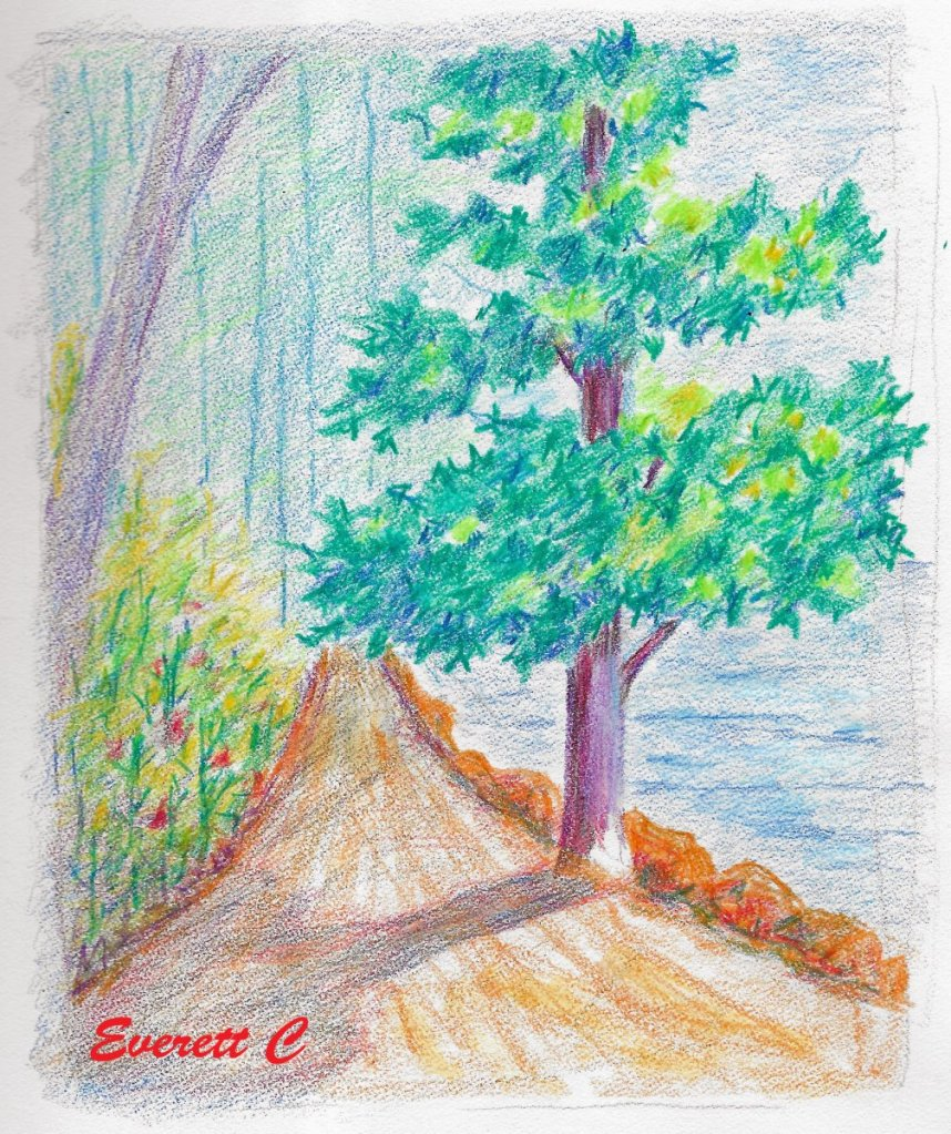 "Daily drawing No. 779. ""Tree on the Path."" Holbein Artists' Colored Pencils. #ArtD"