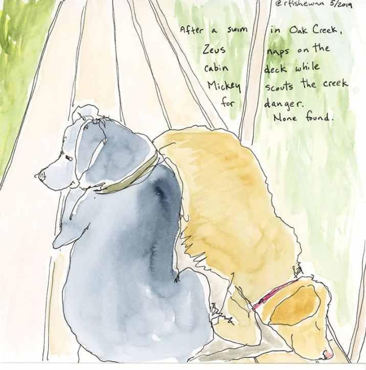 field sketch dogs by Rebecca Fish Ewan