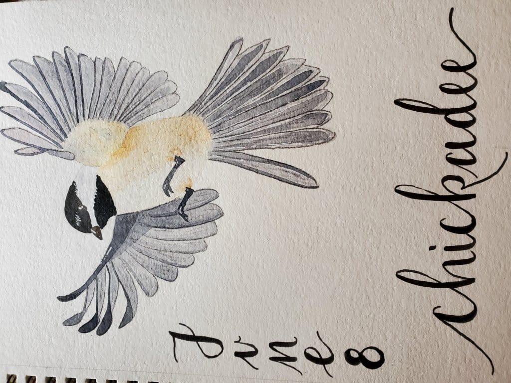Day 8 watercolor chickadee 20210608_155149