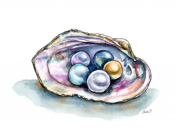 Colorful Pearls Clam Shell Watercolor Illustration Print Detail