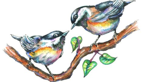 Two Chickadees Love Birds Cute Watercolor Illustration
