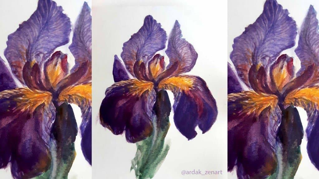 1 iris-cover-photo watercolor tutorial