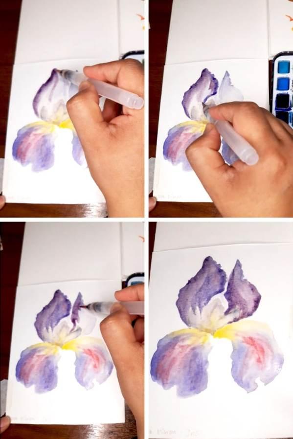10 Watercolor Steps Painting Iris