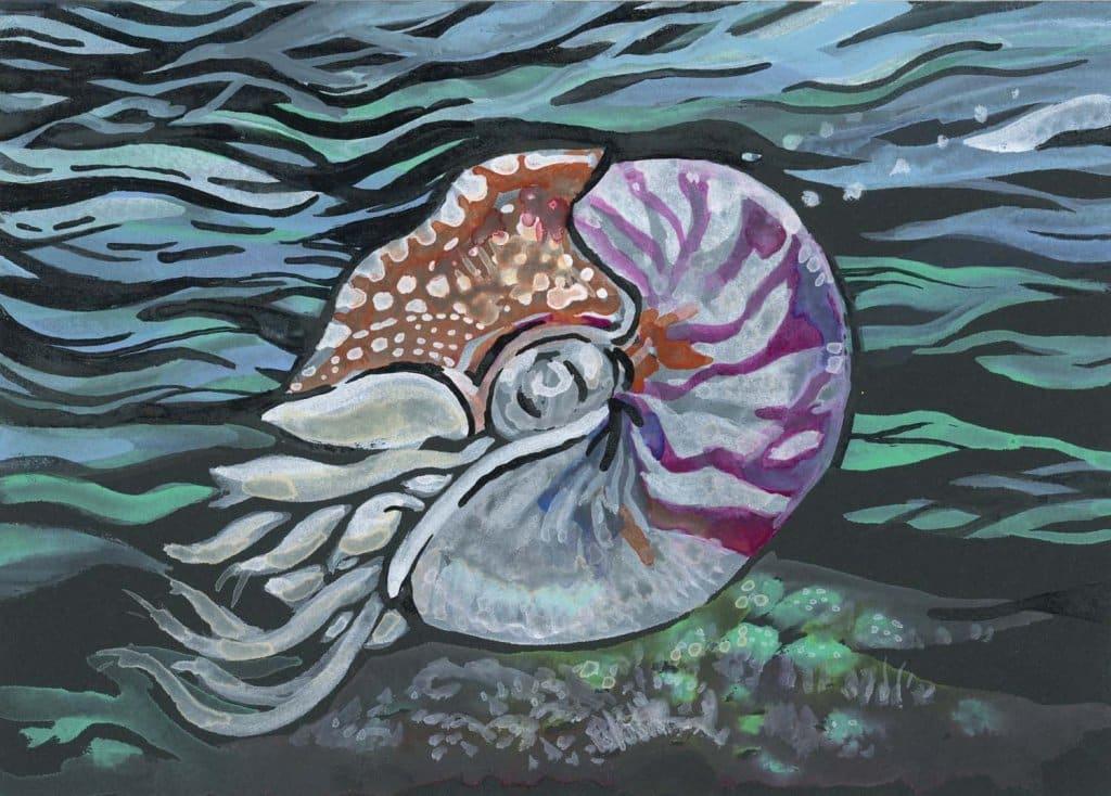Nautilus Watercolor Painting With Gansai Tambi Watercolor