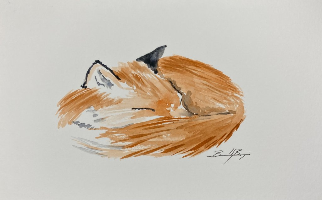 Day 10 – Hushed – Shhhhh. He needs his sleep. 7D851ADD-4545-4551-8A3D-8DF3AB967680