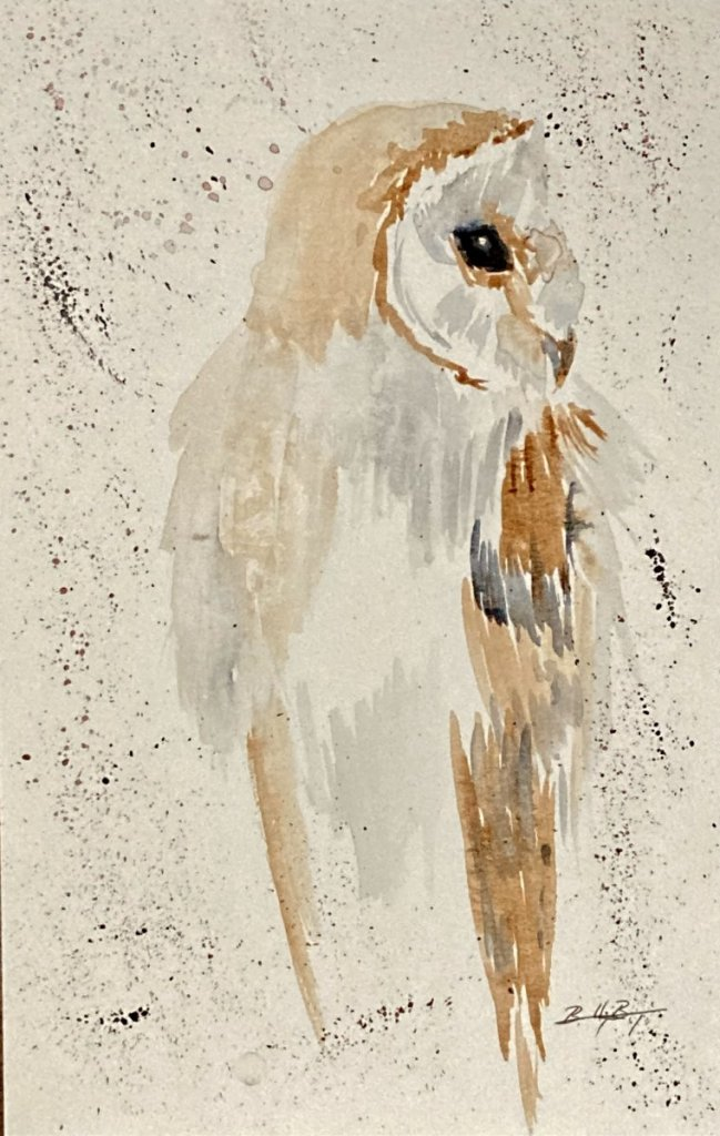 Day 16 – Vision – The ever-watchful owl. BDEA6451-0B8F-41B3-8C27-5736220E133E