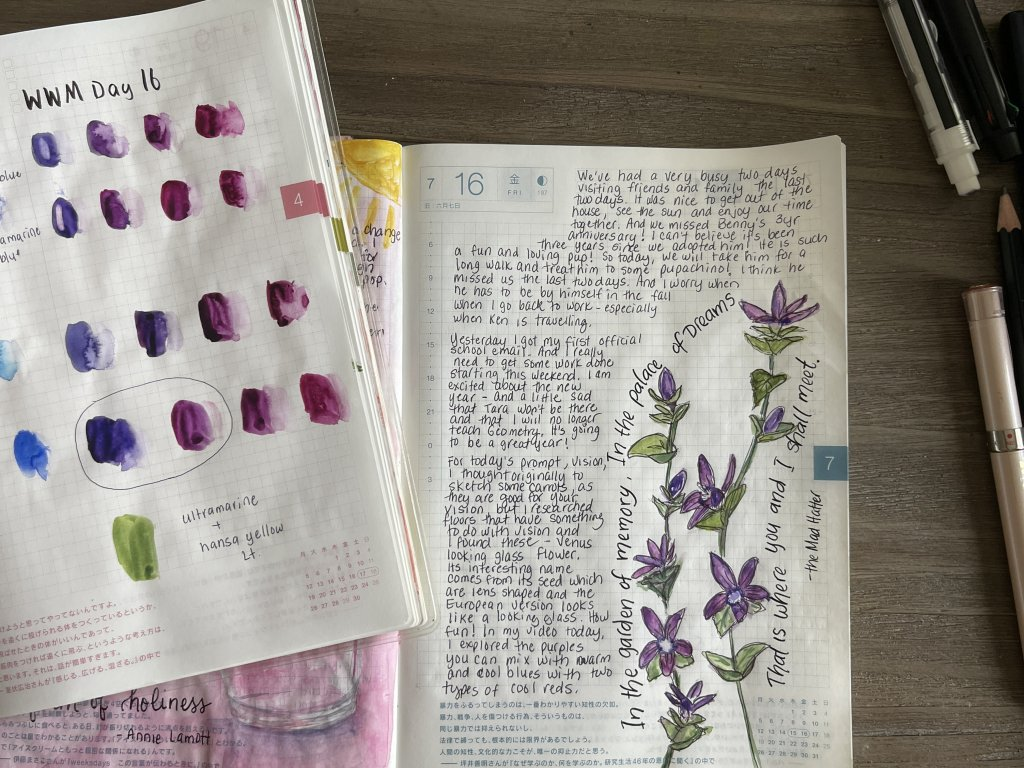 Day 16 – Vision I sketched flowers called Venus Looking Glass. I also mixed different purples