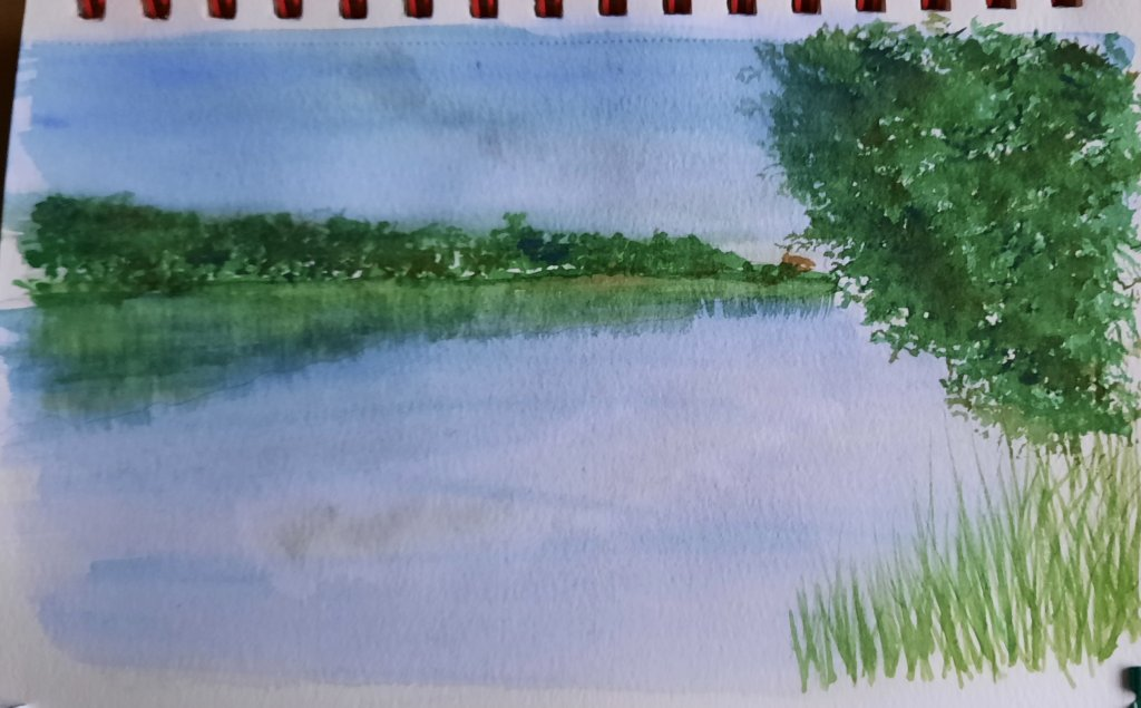 This is from a photo I took while out on a walk recently. #doodlewashaugust2021 Day 26 Lake #worldwa