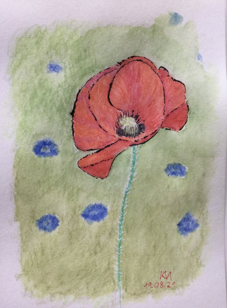"#doodlewashaugust2021 day 19, prompt ""poppy"": IMG_1242"