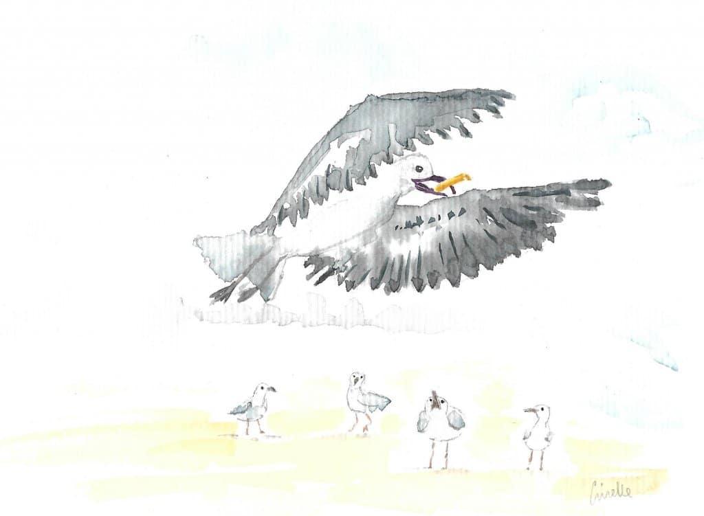 Seagull stealing a chip Seagull stealing a chip