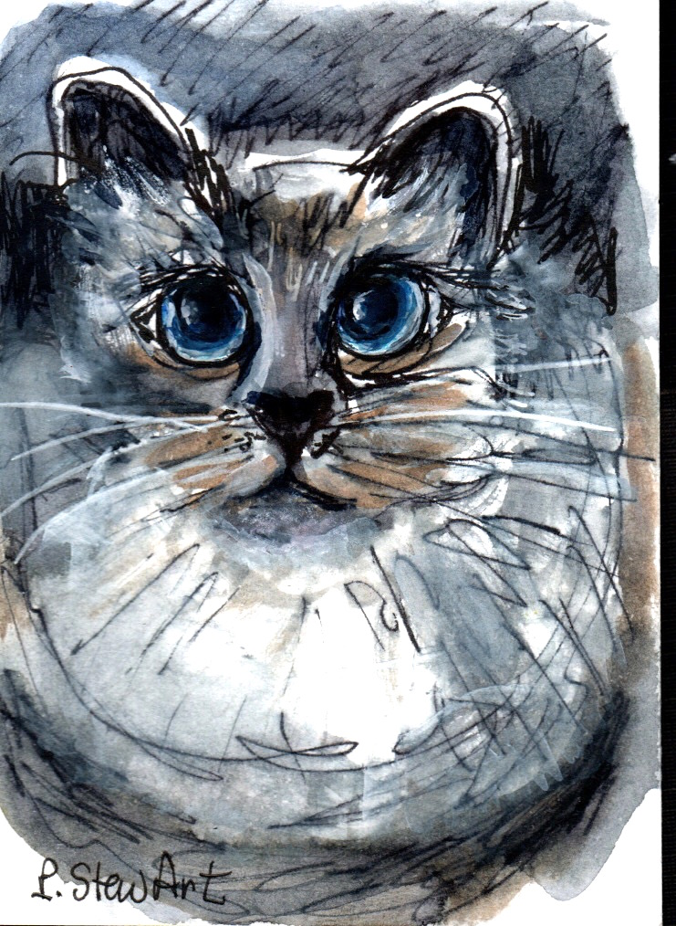Blue Eyed Kitty Cat, ACEO, Day 1 of #doodlewashSeptember2021 #1346-blue eyed cat