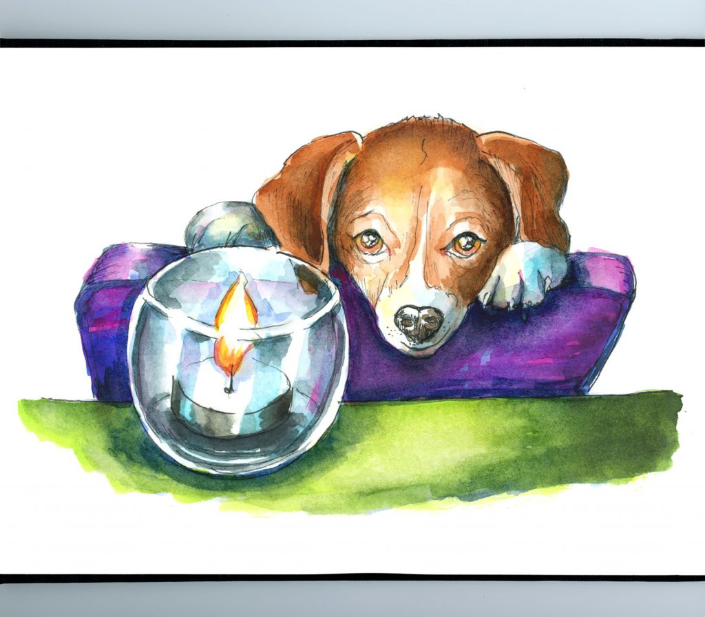 Puppy Looking At Candle Watercolor Illustration Sketchbook Detail